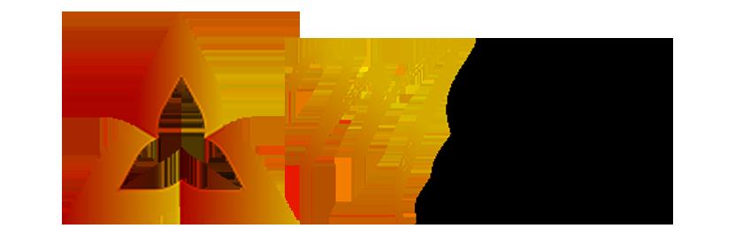 MSul Investimentos